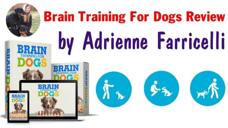 brain-training-for-dogs