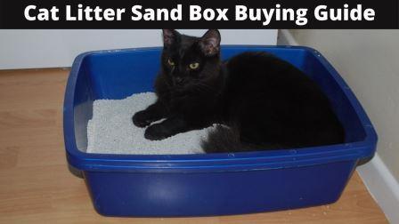 Cat Litter Sand Box