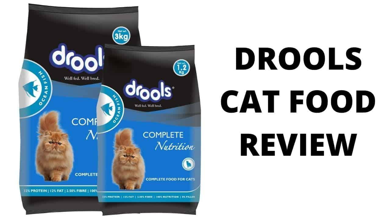 Drools cat food review